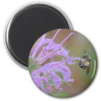 Hang in there / Wild bergamot beebalm 6 Cm Round Magnet