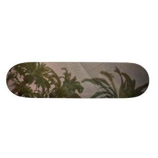 Hang Ten Skate Decks