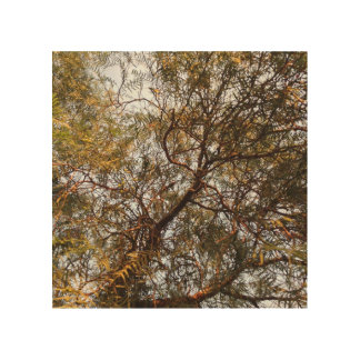 Hanging Branches Wood Wall Art