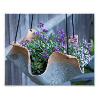 Hanging Flowers Photographic Print