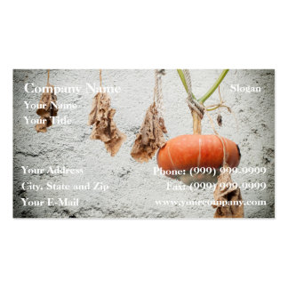 Hanging Gourd Pack Of Standard Business Cards