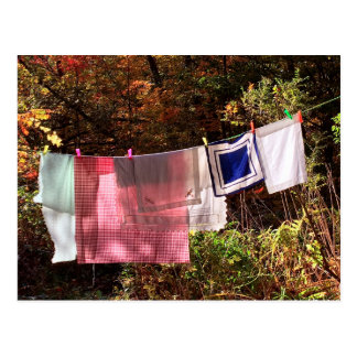 """Hanging Out"" No. 1 postcard Country Clothesline"