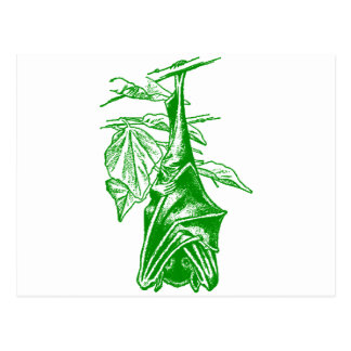 Hanging Sleeping Bat (Neon Green Version) Post Card