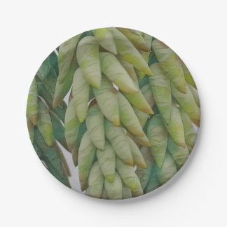 Hanging Succulent Paper Plate