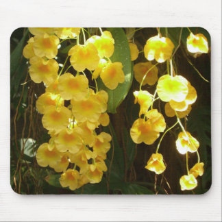 Hanging Yellow Orchids Tropical Flowers Mouse Mat