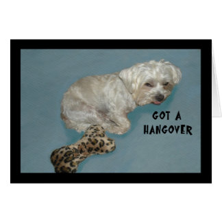 Hangover Card with White Lhasa Dog