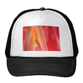hangup cap