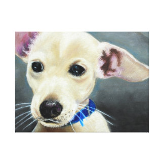 Hank Gallery Wrapped Canvas
