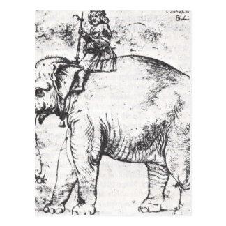 Hanno, The Popes Leo X Elephant by Raphael Postcard