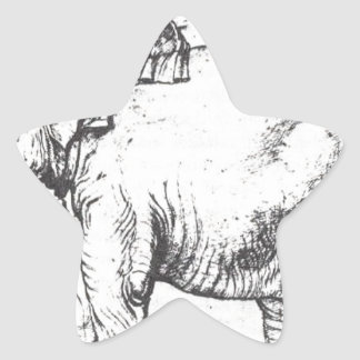 Hanno, The Popes Leo X Elephant by Raphael Star Sticker