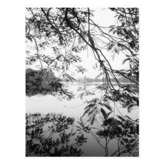 Hanoi Vietnam, Hoan Kiem Lake View Postcard