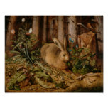 Hans Hoffmann A Hare In The Forest Poster