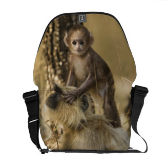 Hanuman Langur adult with young Commuter Bags