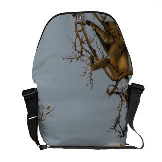 Hanuman Langur climbing in tree Courier Bags