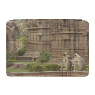 Hanuman Langurs or Black-faced, Common or Grey iPad Mini Cover