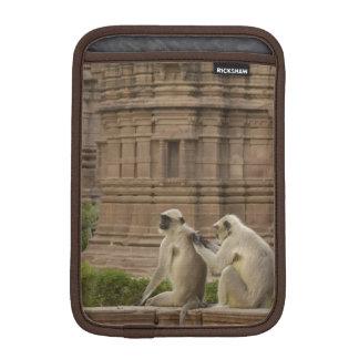 Hanuman Langurs or Black-faced, Common or Grey iPad Mini Sleeve