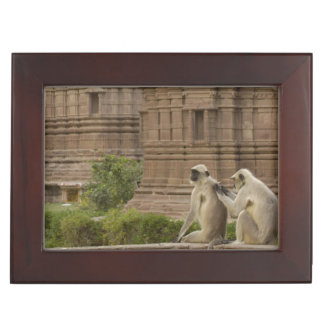 Hanuman Langurs or Black-faced, Common or Grey Keepsake Box