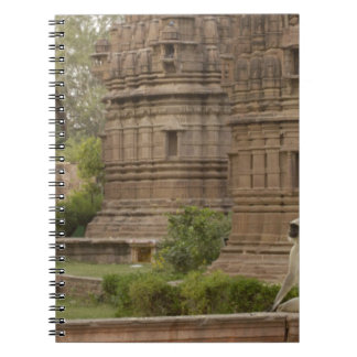 Hanuman Langurs or Black-faced, Common or Grey Notebook