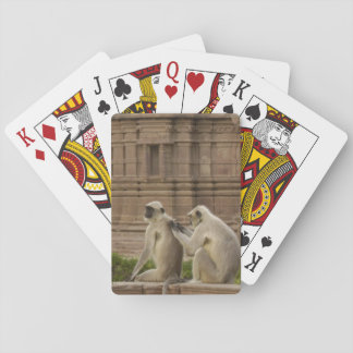 Hanuman Langurs or Black-faced, Common or Grey Playing Cards