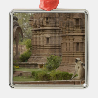 Hanuman Langurs or Black-faced, Common or Grey Silver-Colored Square Decoration