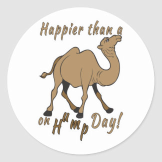 Happier than a Camel on Hump Day Classic Round Sticker