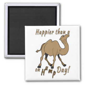 Happier than a Camel on Hump Day Square Magnet