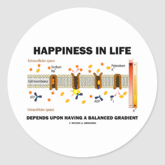 Happiness In Life Depends Upon Balanced Gradient Round Stickers