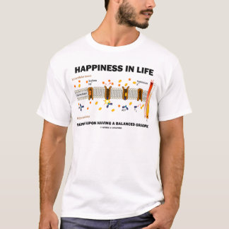 Happiness In Life Depends Upon Balanced Gradient T-Shirt
