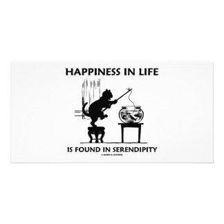 Happiness In Life Is Found In Serendipity (Cat) Photo Greeting Card