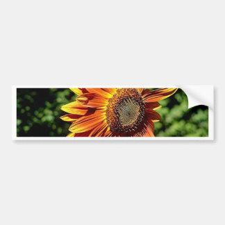 """""""Happiness in Orange""""  Sunflower Bumper Sticker"""