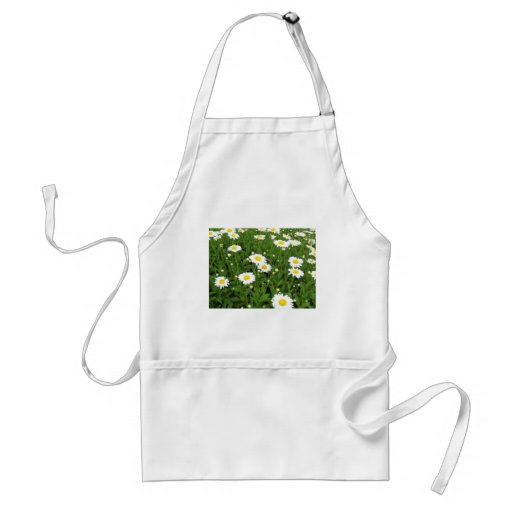 Happiness is a Field of Daisies Apron