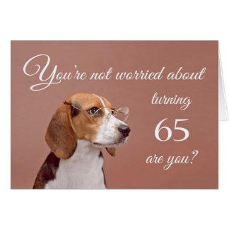 Happy 65th birthday, worried beagle greeting card