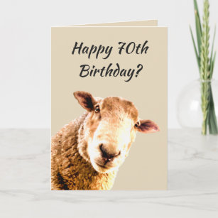Happy 70th Birthday Funny Sheep Animal Humor Card