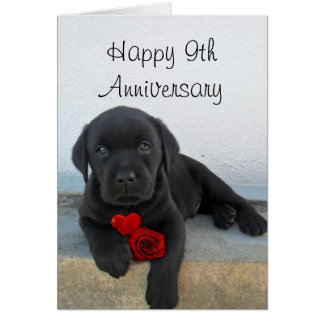 Happy 9th Anniversary Labrador puppy greeting card