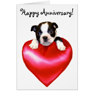 Happy Anniversary Boston Terrier Greeting Card