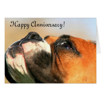 Happy Anniversary Boxer Dog Greeting Card