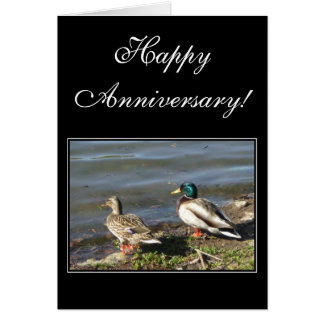 Happy Anniversary Mallard ducks greeting card