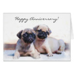 Happy Anniversary Pug puppies greeting card
