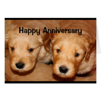 Happy Anniversary To A Dog-Gone Cute Couple Card