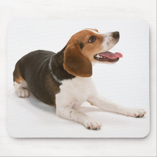 Happy Beagle Mousepad
