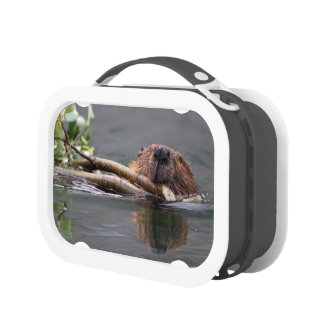 Happy Beaver Lunch Boxes