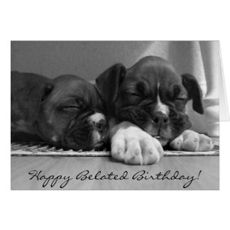 Happy Belated Birthday Boxer Greeting Card