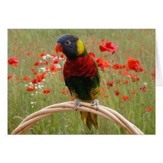 Happy Birdday! Greeting Card