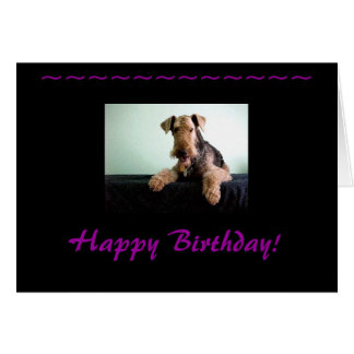 Happy Birthday Airedale Terrier Note Card