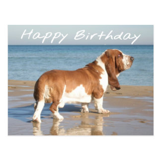 Happy Birthday Basset Hound Puppy Dog Post Card