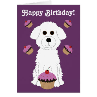 Happy Birthday Bichon with Purple Cupcakes Greeting Card