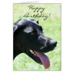Happy Birthday Black Great Dane greeting card