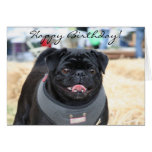 Happy Birthday Black Pug greeting card