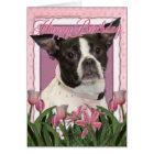 Happy Birthday - Boston & Rat Terrier - Jazy Card