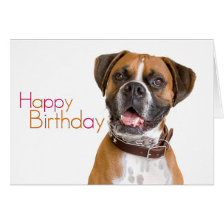 Happy Birthday Boxer Card